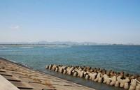 縮-吉野川河口1.jpg