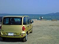F田様黄ムル.jpg