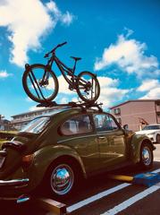 ロフテン+自転車.jpg