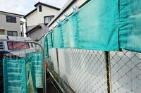 s-幸せの緑のカーテン.jpg